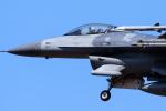 YAMMARさんが、三沢飛行場で撮影したアメリカ空軍 F-16CM-50-CF Fighting Falconの航空フォト(写真)