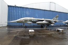 Koenig117さんが、ル・ブールジェ空港で撮影したフランス空軍 Jaguar Eの航空フォト(飛行機 写真・画像)