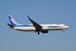 LEGACY-747さんが、成田国際空港で撮影した全日空 737-881の航空フォト(写真)