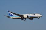 LEGACY-747さんが、成田国際空港で撮影した全日空 787-8 Dreamlinerの航空フォト(写真)
