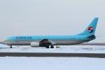 セブンさんが、新千歳空港で撮影した大韓航空 737-9B5の航空フォト(飛行機 写真・画像)