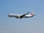 PoYi Tingさんが、台湾桃園国際空港で撮影した日本航空 737-846の航空フォト(写真)