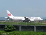 PoYi Tingさんが、台湾桃園国際空港で撮影した日本航空 787-8 Dreamlinerの航空フォト(写真)