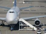 Dreamliner_NRT51さんが、成田国際空港で撮影した全日空の航空フォト(写真)