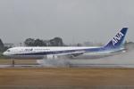 camelliaさんが、鹿児島空港で撮影した全日空 767-381の航空フォト(写真)