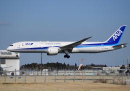雲霧さんが、成田国際空港で撮影した全日空 787-9の航空フォト(写真)