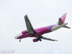 PoYi Tingさんが、台湾桃園国際空港で撮影したピーチ A320-214の航空フォト(写真)