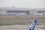 AntonioKさんが、羽田空港で撮影した全日空 A321-211の航空フォト(写真)