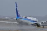 julyさんが、鳥取空港で撮影した全日空 737-881の航空フォト(写真)