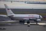 どらいすたーさんが、羽田空港で撮影したロシア航空 Il-96-300の航空フォト(写真)