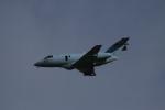 endress voyageさんが、新田原基地で撮影した航空自衛隊 U-125A(Hawker 800)の航空フォト(写真)