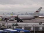 51ANさんが、羽田空港で撮影したロシア航空 Il-96-300の航空フォト(写真)