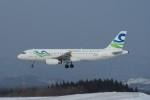 marariaさんが、青森空港で撮影したスカイウィングス・アジア・エアラインズ A320-231の航空フォト(写真)