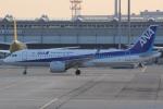 いっとくさんが、関西国際空港で撮影した全日空 A320-271Nの航空フォト(写真)
