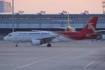 いっとくさんが、関西国際空港で撮影した深圳航空 A320-214の航空フォト(写真)