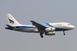 ぱなくろさんが、ワットタイ国際空港で撮影したバンコクエアウェイズ A319-132の航空フォト(写真)