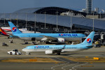we love kixさんが、関西国際空港で撮影した大韓航空 737-8Q8の航空フォト(写真)