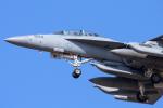 YAMMARさんが、三沢飛行場で撮影したアメリカ海軍 EA-18G Growlerの航空フォト(写真)