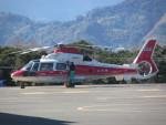 ランチパッドさんが、静岡ヘリポートで撮影した山形県消防防災航空隊 AS365N2 Dauphin 2の航空フォト(写真)