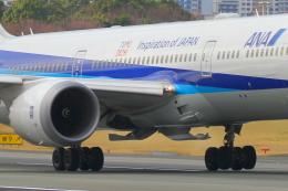 suu451さんが、伊丹空港で撮影した全日空 787-9の航空フォト(写真)