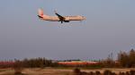 mojioさんが、成田国際空港で撮影した日本航空 737-846の航空フォト(写真)