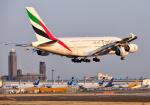 mojioさんが、成田国際空港で撮影したエミレーツ航空 A380-861の航空フォト(飛行機 写真・画像)