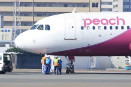 Billyさんが、福岡空港で撮影したピーチ A320-214の航空フォト(写真)
