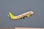 T.Sazenさんが、羽田空港で撮影したソラシド エア 737-81Dの航空フォト(飛行機 写真・画像)