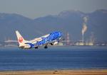 タミーさんが、中部国際空港で撮影した日本トランスオーシャン航空 737-8Q3の航空フォト(写真)