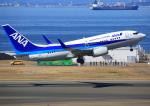 タミーさんが、中部国際空港で撮影した全日空 737-781の航空フォト(写真)