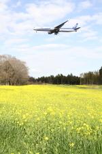 電車の運転士さんが、成田国際空港で撮影した全日空 777-381/ERの航空フォト(写真)
