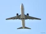 ひこうきぐも76さんが、高知空港で撮影した全日空 737-881の航空フォト(写真)