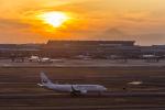 mameshibaさんが、羽田空港で撮影した日本航空 737-846の航空フォト(写真)