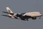 木人さんが、成田国際空港で撮影したマレーシア航空 A380-841の航空フォト(写真)