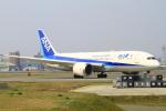 スターアライアンスKMJ まいやんさんが、福岡空港で撮影した全日空 787-8 Dreamlinerの航空フォト(写真)