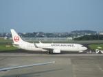 つっさんさんが、高知空港で撮影した日本航空 737-846の航空フォト(写真)