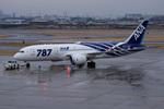xxxxxzさんが、伊丹空港で撮影した全日空 787-8 Dreamlinerの航空フォト(飛行機 写真・画像)