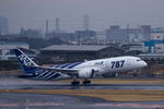 Severemanさんが、伊丹空港で撮影した全日空 787-8 Dreamlinerの航空フォト(写真)