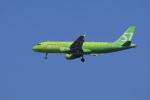 yoshi_350さんが、成田国際空港で撮影したS7航空 A320-214の航空フォト(写真)