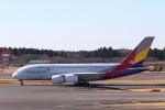 OS52さんが、成田国際空港で撮影したアシアナ航空 A380-841の航空フォト(写真)