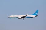 OS52さんが、成田国際空港で撮影した厦門航空 737-85Cの航空フォト(写真)