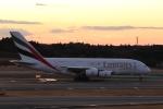 OS52さんが、成田国際空港で撮影したエミレーツ航空 A380-861の航空フォト(写真)