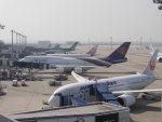 のんびりこまきさんが、中部国際空港で撮影したタイ国際航空 747-4D7の航空フォト(写真)