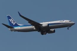 木人さんが、成田国際空港で撮影した全日空 737-881の航空フォト(飛行機 写真・画像)