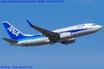 Chofu Spotter Ariaさんが、関西国際空港で撮影した全日空 737-781の航空フォト(飛行機 写真・画像)
