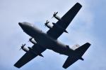 JA8501さんが、横田基地で撮影したアメリカ空軍 C-130H Herculesの航空フォト(写真)