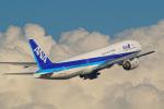 tkosadaさんが、羽田空港で撮影した全日空 777-281の航空フォト(写真)
