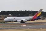 prado120さんが、成田国際空港で撮影したアシアナ航空 A380-841の航空フォト(写真)