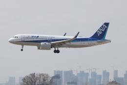 TAOTAOさんが、青島流亭国際空港で撮影した全日空 A320-271Nの航空フォト(飛行機 写真・画像)
