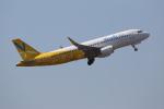 prado120さんが、成田国際空港で撮影したバニラエア A320-214の航空フォト(写真)
